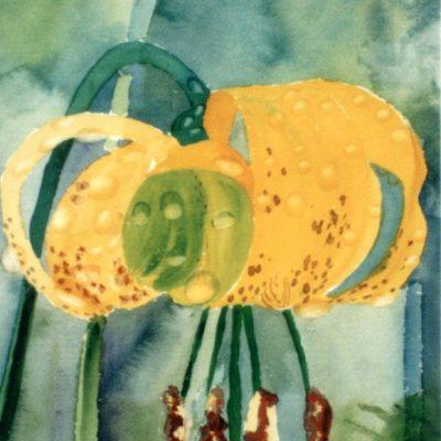 <i>Plaisir sauvage</i><br />aquarelle sur papier Arches, 1997, 30 x 26 cm – collection privée